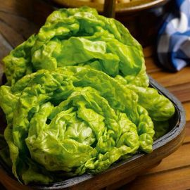 Suttons Seeds - Lettuce  - All The Year Round