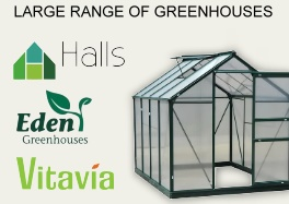 Large range of Greenhouse at Lenehans